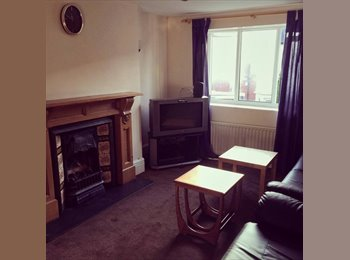 EasyRoommate UK - Room for Rent in 6 Bed Student Flat Jesmond - Jesmond, Newcastle upon Tyne - £347