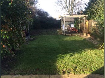 Large double( size of 2 double rooms) room to let
