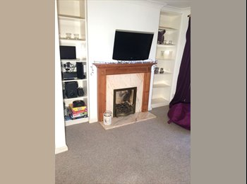 EasyRoommate UK - Friendly, Central Brighton shared. (Pets) - Brighton, Brighton and Hove - £675
