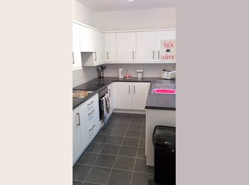EasyRoommate UK - 1 Female Student Wanted for Sharing 4 Bed House - York, York - £70