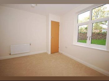 EasyRoommate UK - Lovely double room with own bathroom - unfurnished - Crystal Palace, London - £650