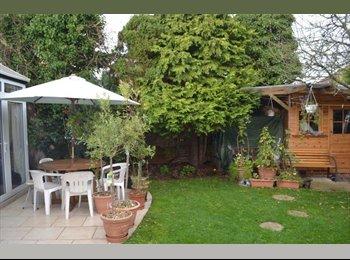 EasyRoommate UK - Lovely rooms (1 single, 4 double) in shared house - Barnet, London - £450