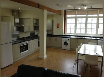 EasyRoommate UK - ROOM AVAILABLE IN 8 BED FLAT - Broomhill, Sheffield - £396