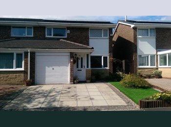 EasyRoommate UK - Double room in Higher Penwortham house - Penwortham, Preston - £400