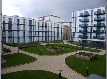 EasyRoommate UK - Double bedroom in new Colindale Pulse development - Kingsbury, London - £800