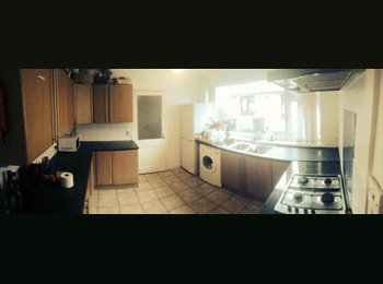 EasyRoommate UK - Room to Let in Large, Detached House - Cathays, Cardiff - £305