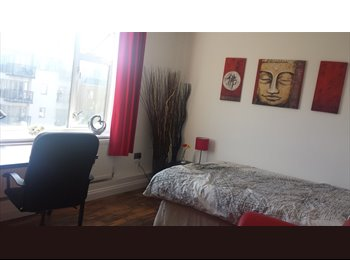 EasyRoommate UK - Lovely double room in south London - Streatham, London - £600