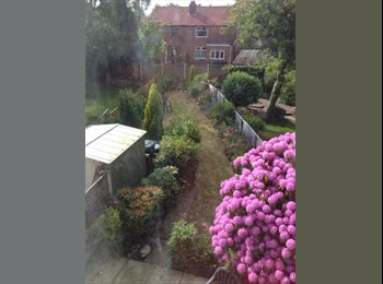 EasyRoommate UK - Sunny Double Room Available - Withington, Manchester - £330