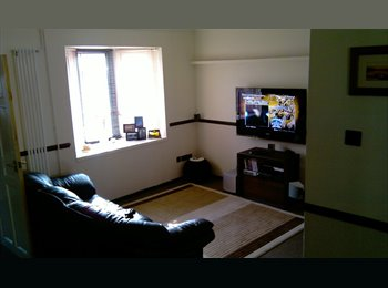 EasyRoommate UK - Double Room in Shared House South Bretton - Peterborough, Peterborough - £320