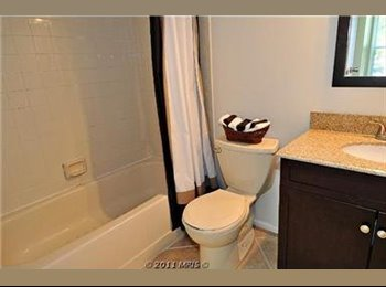 Room for rent in Columbia, Md