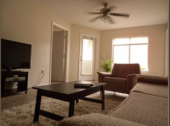 EasyRoommate US - University Students - Gainesville, Gainesville - $380