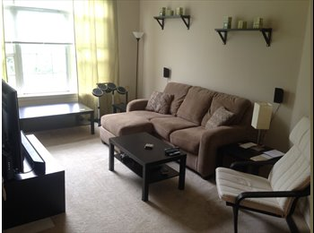 Seeking fellow young professional roommate