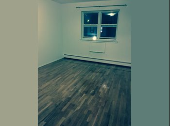 roommate needed to share big apartment
