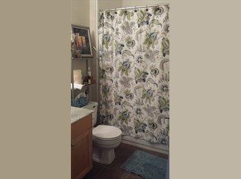 EasyRoommate US - Bright location in San Ramon/Dublin Room for rent - San Ramon, Oakland Area - $1050