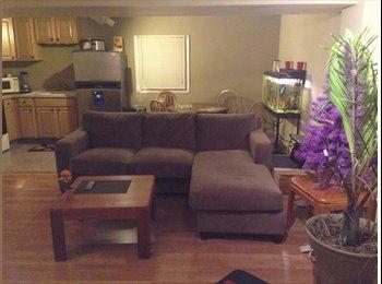 EasyRoommate US - Nice quiet place conveniently located - Alexandria, Alexandria - $700