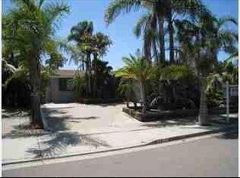 EasyRoommate US - Great House in 92120 - Del Cerro, San Diego - $750