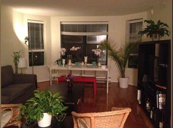 Amazing 2BR, 2Bth apartment, Back Bay