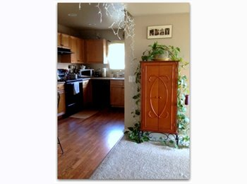 EasyRoommate US - Room for rent -UNR - Reno, Reno - $375