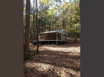 EasyRoommate US - Cabin for rent - Asheville, Other-North Carolina - $700