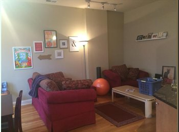 Young Female Professional Wanted for AMAZING apt!