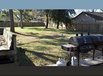 EasyRoommate US - ROOMMATE NEEDED $550 LARGE YARD, APPROX 2000SF - Humble / Kingwood, Houston - $550