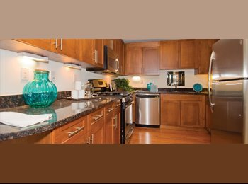 EasyRoommate US - renting an apartement unit - Bethesda, Other-Maryland - $1000
