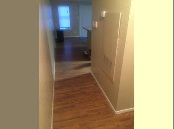 South Lamar apartment for rent