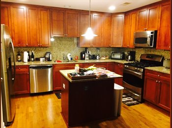 Rehabbed Apt in Logan Square- need 2 roommates