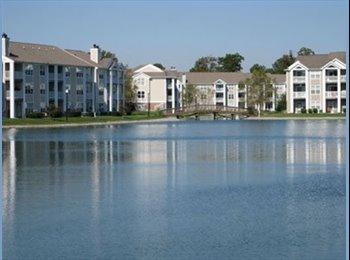EasyRoommate US - Waterfront Apts - Lynnhaven, Virginia Beach - $575