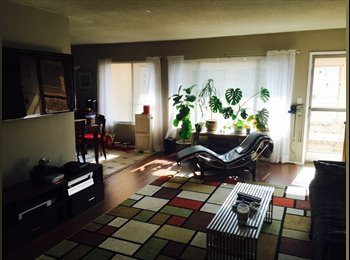 Roommate for Spacious 2BD, 2BA Apt. in WeHo