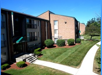 EasyRoommate US - Graduate Student to Share a One Bedroom/ Bathroom - Ann Arbor, Ann Arbor - $403