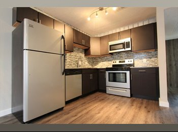 Looking for a Roommate for my new 2/2 apartment!