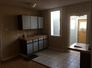 I need a roommate in Old Town! 23M $550/mo
