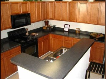 EasyRoommate US - 1 bedroom Luxury Apartment in Ideal Location - Raleigh, Raleigh - $848