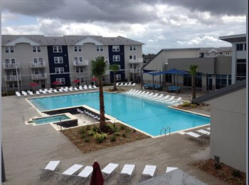 EasyRoommate US - Studio Apartment Available for Subleasing - San Marcos, San Marcos - $779