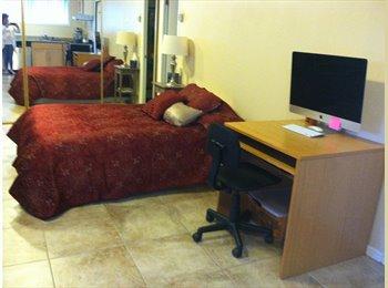 Beautiful Studio fully furnished near UCSF