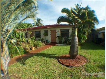 EasyRoommate US - Wilton Manors on the Drive! - Wilton Manors, Ft Lauderdale Area - $700