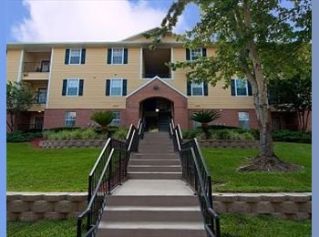 EasyRoommate US - $319 rent! Room must go soon! - Gainesville, Gainesville - $319