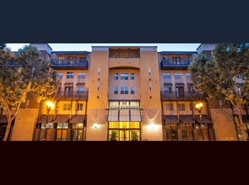 Shared Room Available for Rent in SanJose Downtown