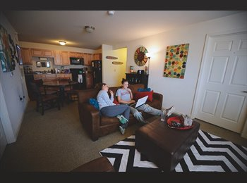 EasyRoommate US - 1 bedroom in a 3 bedroom apartment - Ames, Other-Iowa - $510