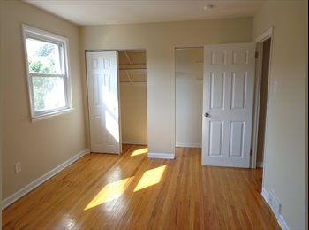 Professional Female has spacious room for rent