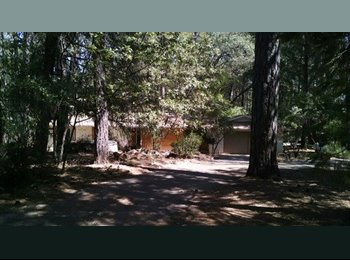 EasyRoommate US - HOUSEMATE M/F TO SHARE A HOME ON 1 ACRE - Sierra, Northern California - $550