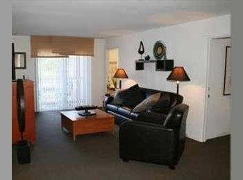 EasyRoommate US - ROOM AVAILABLE// USF AREA ONLY $548 - North Tampa, Tampa - $548