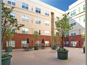 EasyRoommate US -  Hurry!!! 1 Bedroom 1 bathroom best student living - University, Minneapolis / St Paul - $750