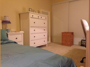 Spacious and lovely apartment in downtown Berkeley