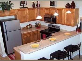 EasyRoommate US - Subleasing 1/1 master room in a large townhouse - Tallahassee, Tallahassee - $454