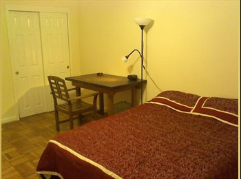 Large bdrm for rent