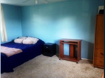Room for rent, Saint Petersburg FL