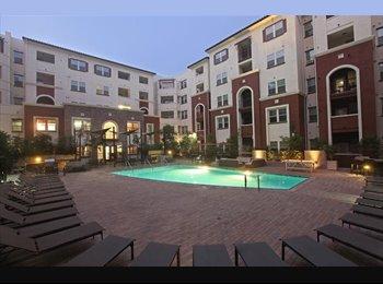 EasyRoommate US - single room - North Coastal, San Diego - $1000