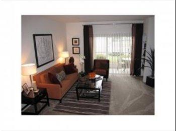 EasyRoommate US - room for rent near Jax Beach - Southeast Jacksonville, Jacksonville - $600